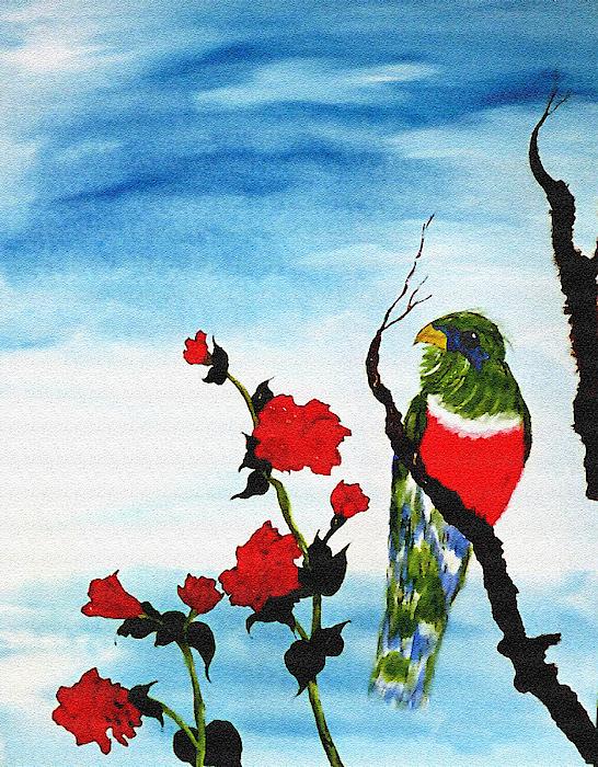 Belinda Landtroop - Time Parrot