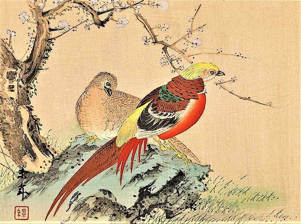 Imao Keinen - Top Quality Art - Keinen Kachoshokan 12view 1