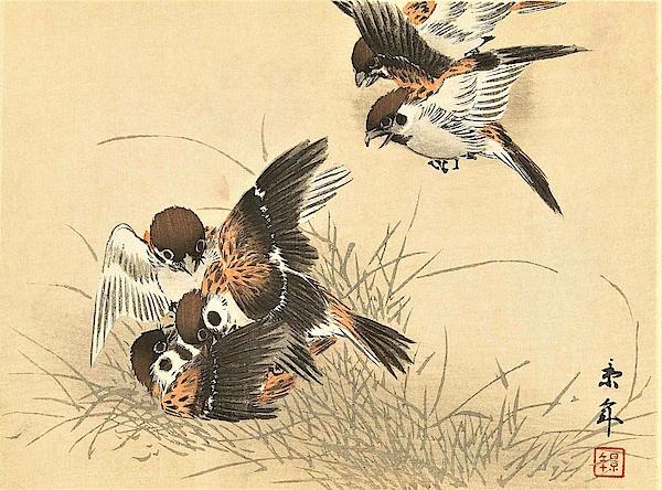 Imao Keinen - Top Quality Art - Keinen Kachoshokan 12view 11