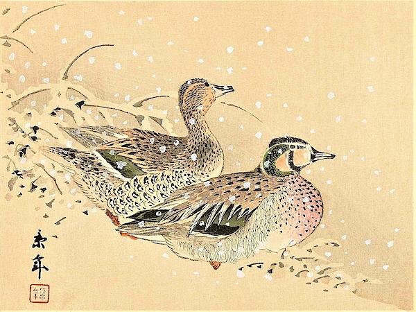 Imao Keinen - Top Quality Art - Keinen Kachoshokan 12view 12