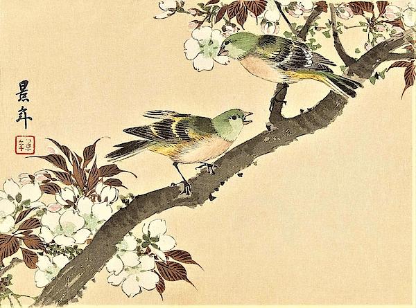Imao Keinen - Top Quality Art - Keinen Kachoshokan 12view 2