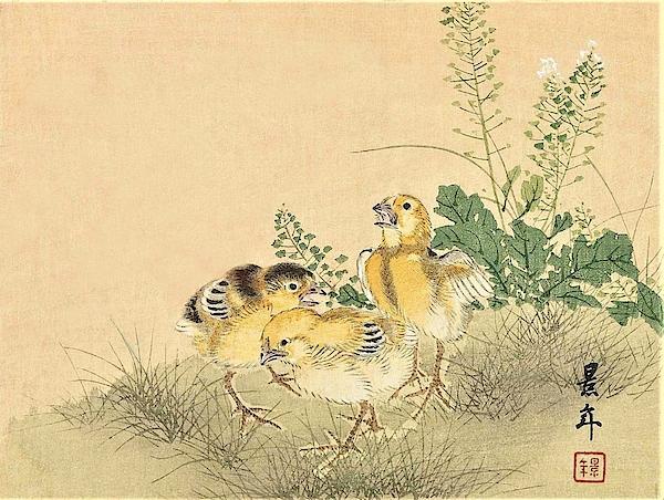 Imao Keinen - Top Quality Art - Keinen Kachoshokan 12view 3