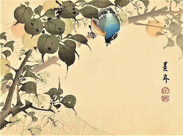 Imao Keinen - Top Quality Art - Keinen Kachoshokan 12view 5
