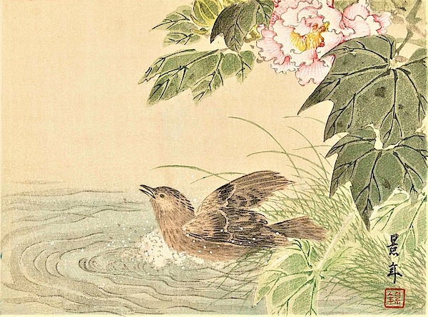 Imao Keinen - Top Quality Art - Keinen Kachoshokan 12view 8