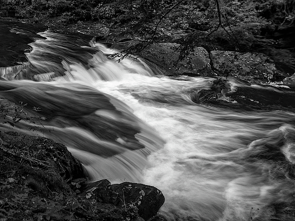 Louis Dallara - Waterfalls at Ricketts Glenn