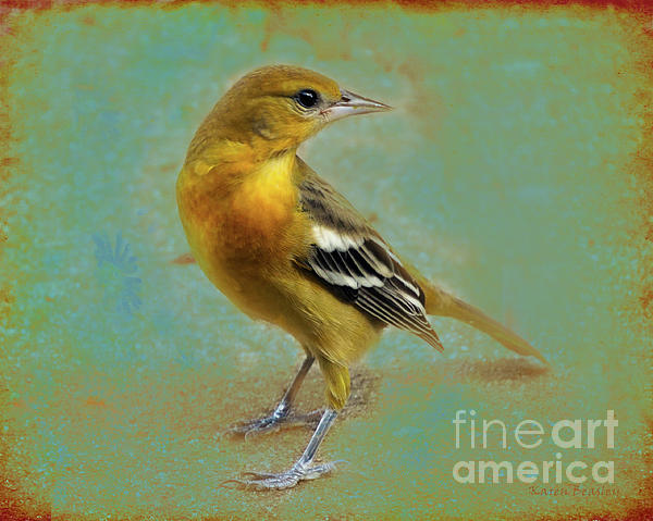 Karen Beasley - Yellow Goldfinch 2