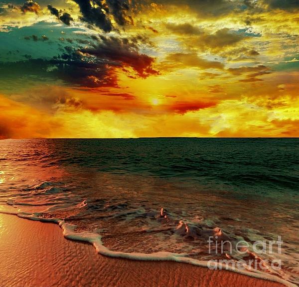 Tony Williams - Florida sunset