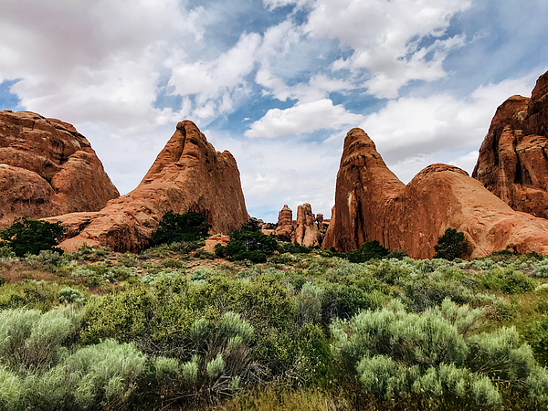 Joie Cameron-Brown - Beauty at Arches National Park