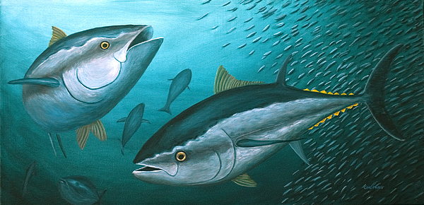 Gloria Hopkins - Deep Blues, Atlantic Bluefin Tunas and Bait Ball
