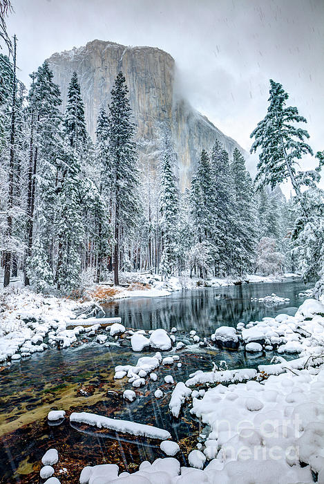 El Capitan And The Merced River In Yosemite National Park Photograph