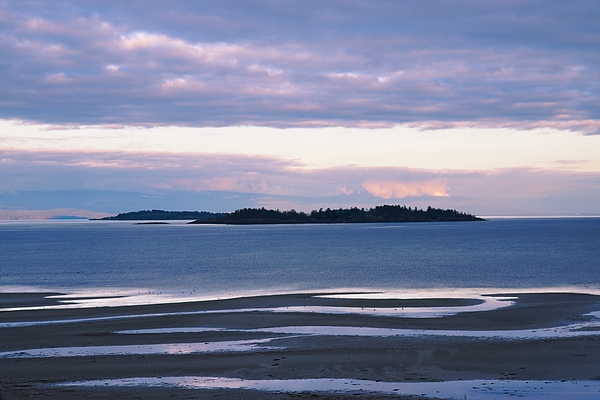 Allan Van Gasbeck - Evening Glow Low Tide