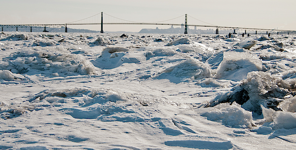 Lieve Snellings - Frozen Waves of the St Lawrence river