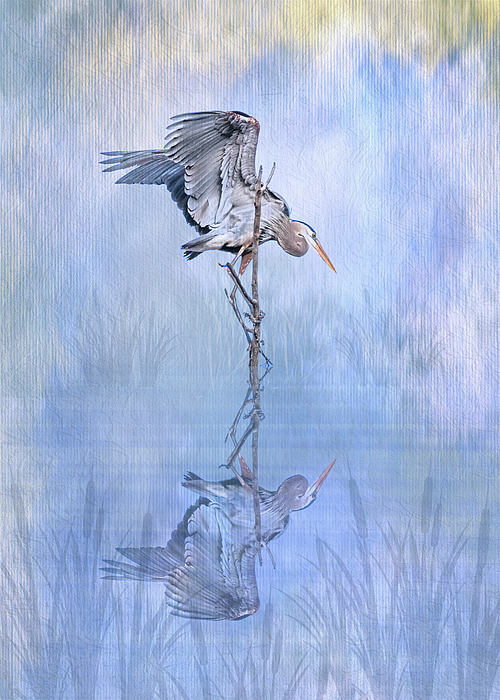 Patti Deters - Great Blue Heron Texture Reflection - Vertical