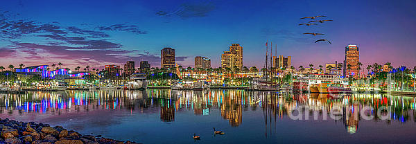 David Zanzinger - Harbor Magic Hour Cityscape Vista