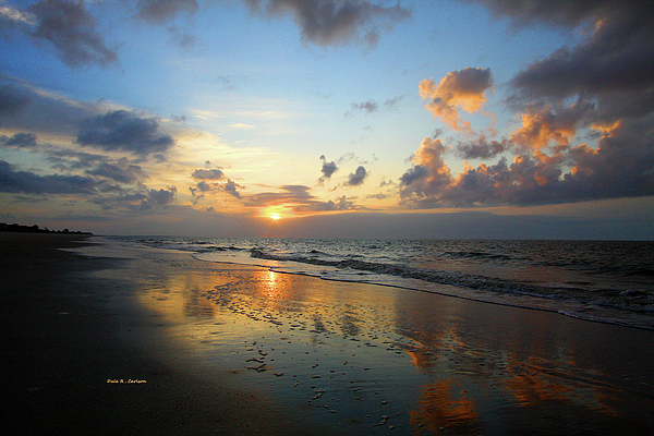 Dale R Carlson - Surf Daybreak
