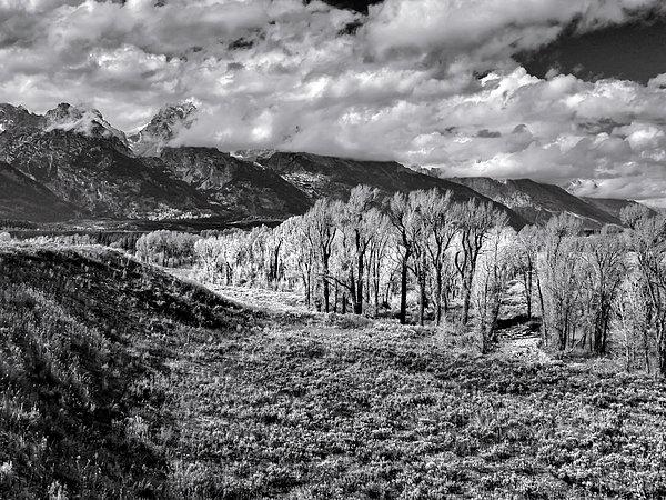 Norma Brandsberg - Teton Mountain  View in Black and White