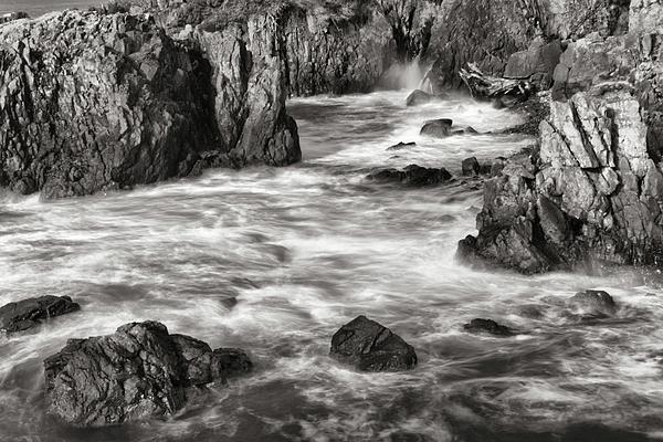 Allan Van Gasbeck - Tidal Action Close Black and White