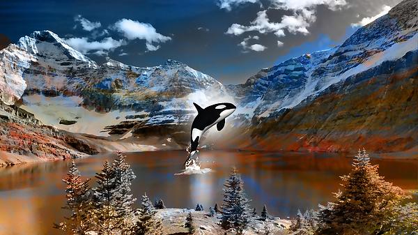 Marvin Blaine - Whale Of A Dream