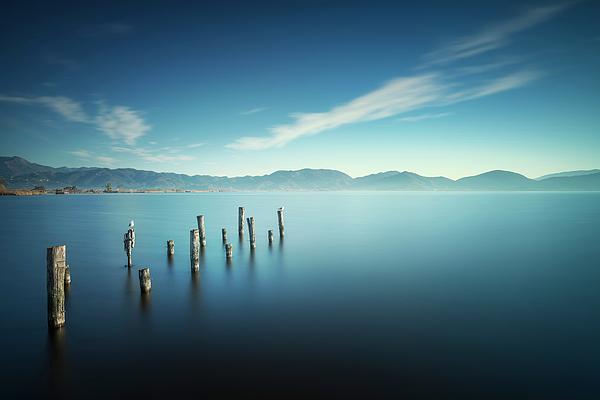 StevanZZ Photography - Wooden pier remains at sunrise. Massaciuccoli lake. Torre del La
