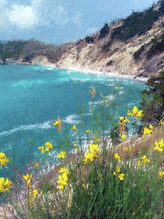 Alex Mir - Yellow Flowers over the Sea Bay