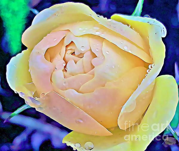 Tracy Ruckman - Yellow Rose Bud
