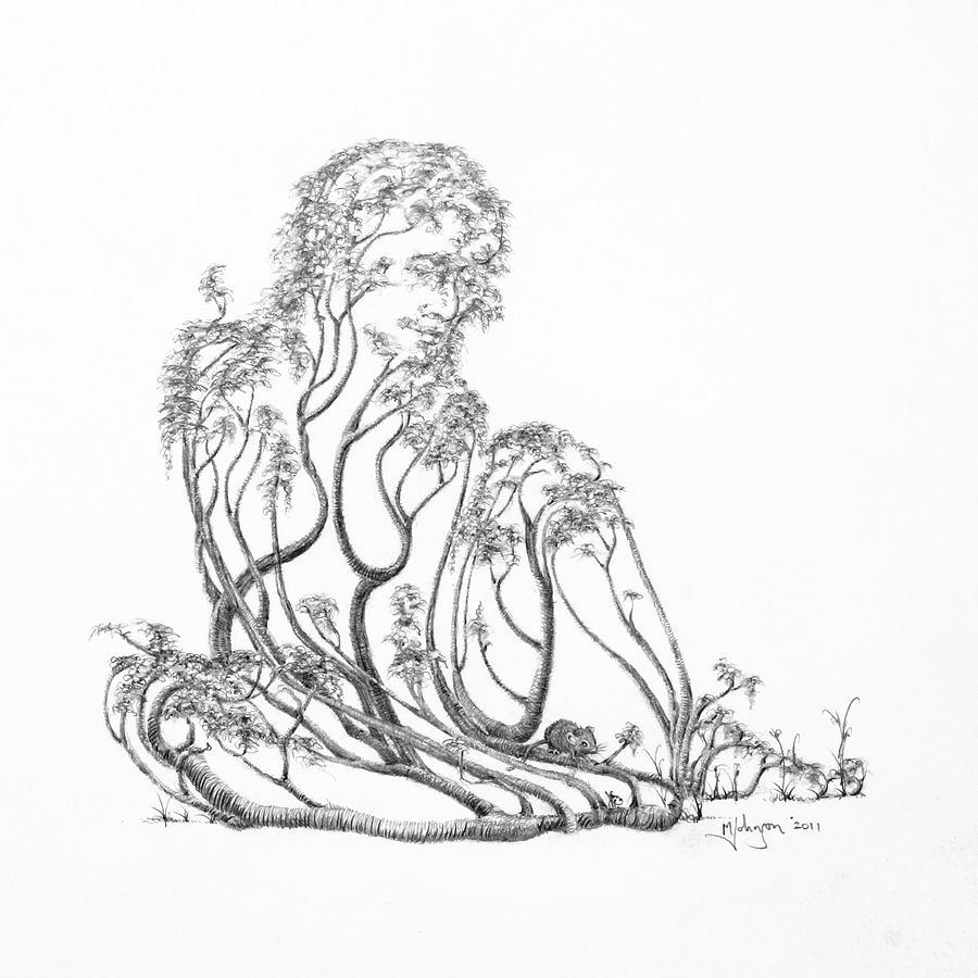 Tree Dancer Drawing -  A Little Visit by Mark Johnson