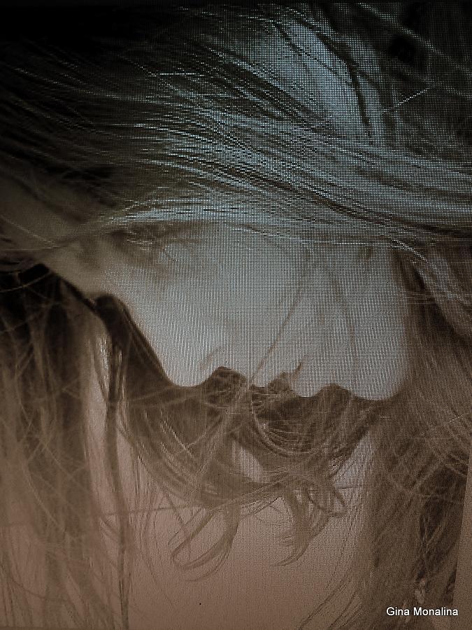 Hair Photograph -  A Self Portrait by Gina Monalina