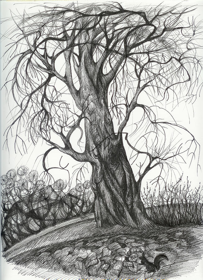 Pen And Ink Drawing -  Autumn Dancing Tree by Anna  Duyunova