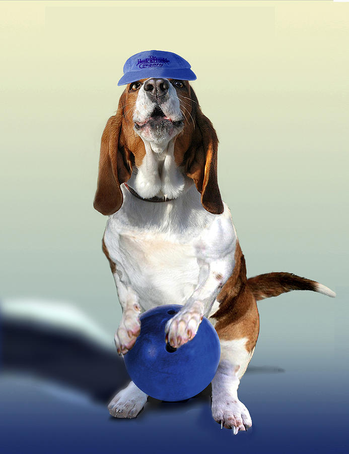 Bowling Hound Painting