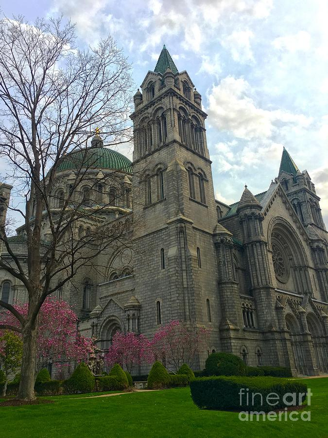 Celebrations spring at the Cathedral Basilica  by Debbie Fenelon