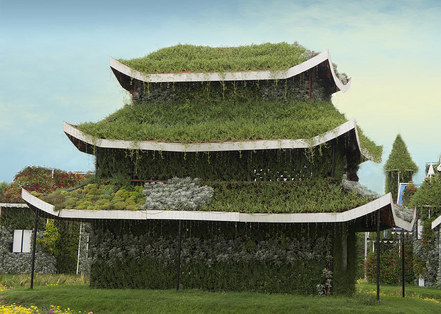 Chinese House by Art Spectrum