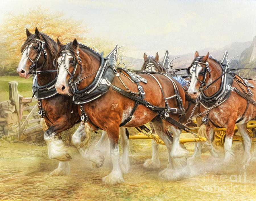 Clydesdales In Harness Digital Art