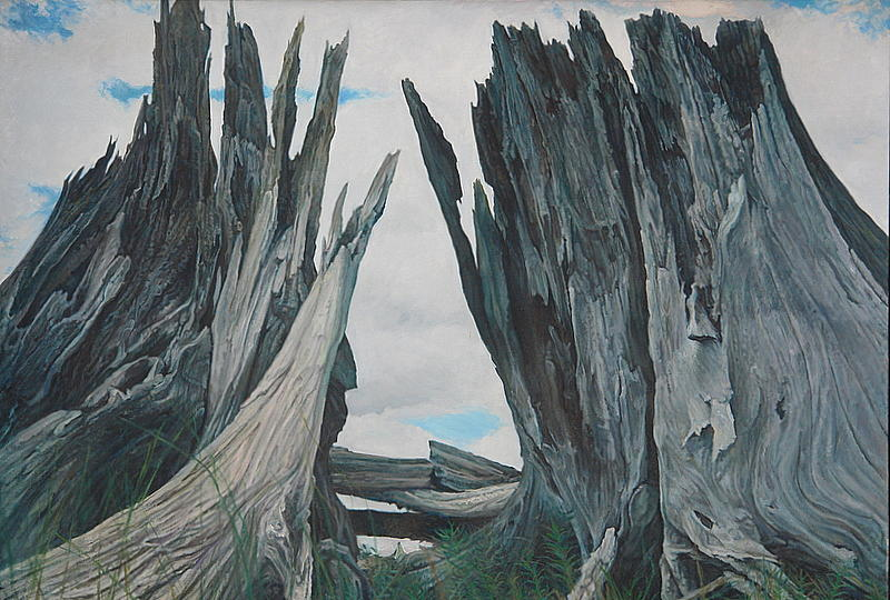 Landscape Painting -  Confrontation by James Sparks