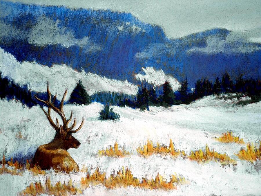 Prints Pastel -  High Country Elk by Curt Peifley