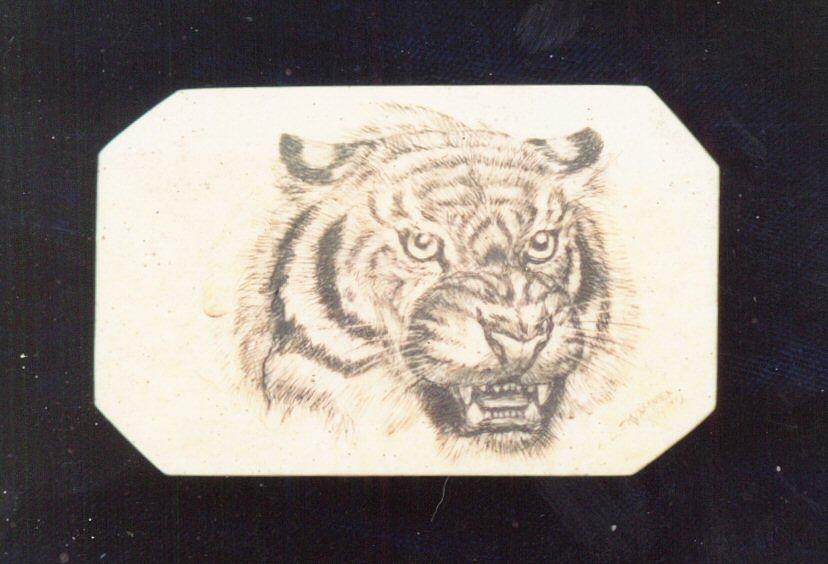 Tiger Sculpture -  Ivorytiger by Leif Thor Kvammen