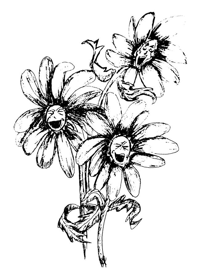 laughing daisy drawing by holly marie