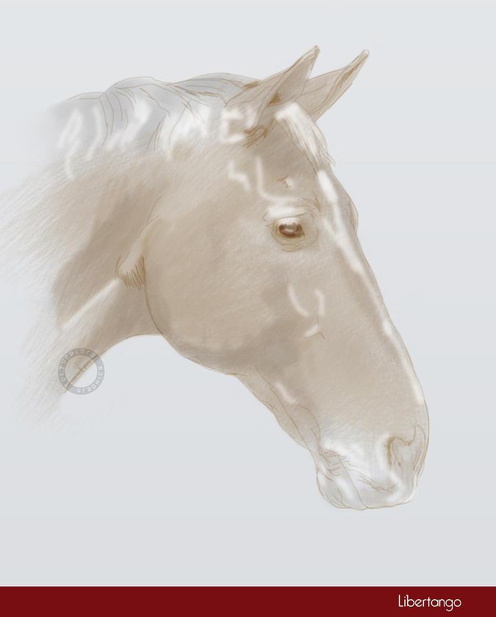 Horse Mixed Media -  Libertango by TortureLord Art
