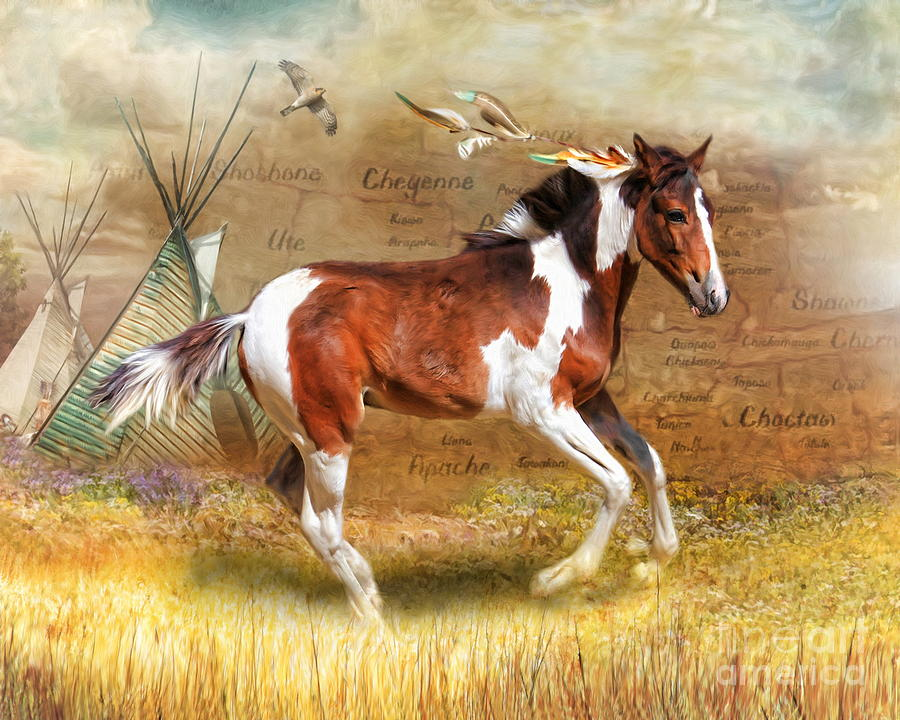 Little Apache Digital Art