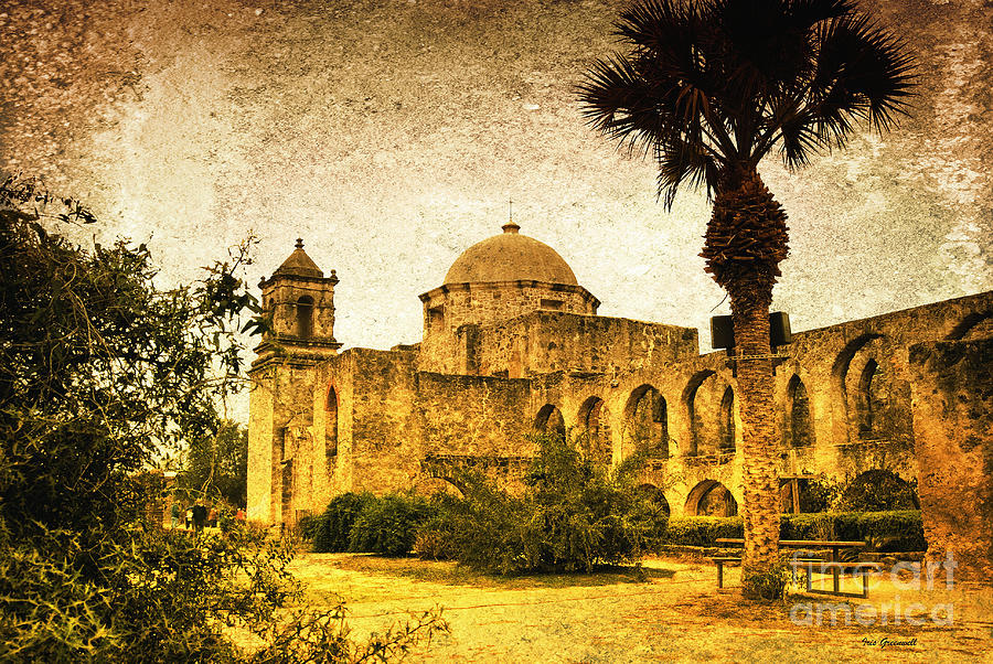 Palm Trees Photograph -  Mission San Jose by Iris Greenwell