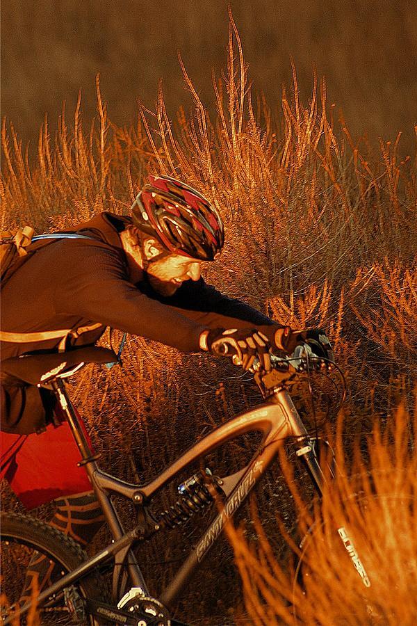 Mountain Photograph -  Mountain Bike by Viktor Savchenko