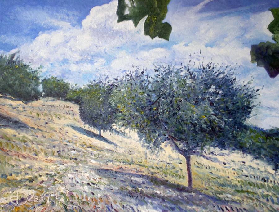 Impressionism Painting -   Olive Grove At Monte Cardeto Lazio Italy 2009  by Enver Larney