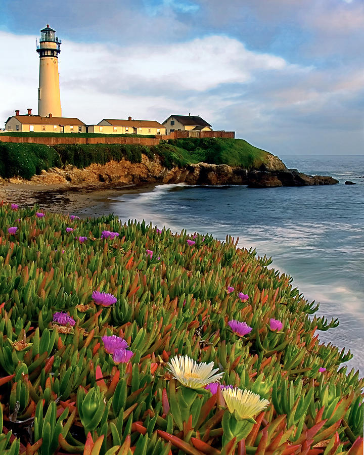 Architecture Photograph -  Pigeon Point Lighthouse With Spring Wildflowers by George Oze