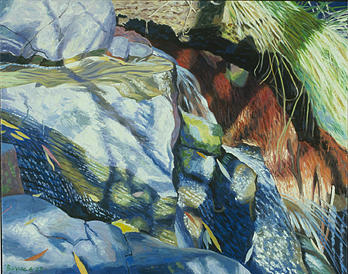 James Burpee Painting -  Small Cascades And  Branch Shadows  by James Burpee