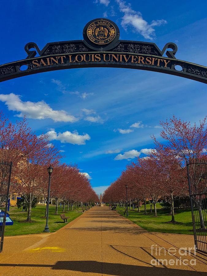 Springtime at St. Louis University  by Debbie Fenelon