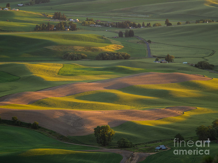Barns Photograph -  Steptoe Butte 10 by Tracy Knauer