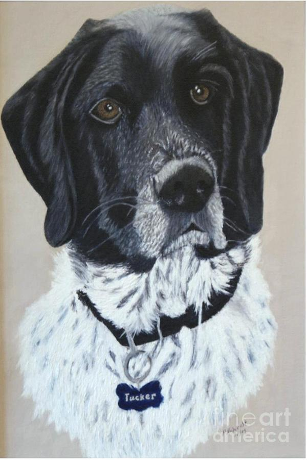 Tucker Painting by Peggy Holcroft