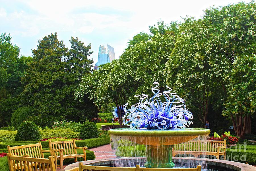 Atlanta Botanical Gardens Photograph - 01142017063 by Debbie L Foreman