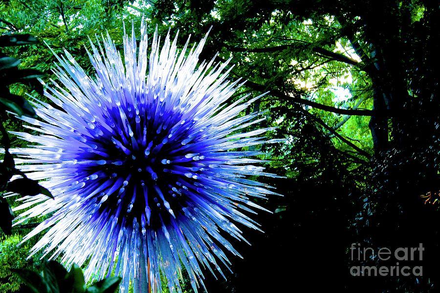 Atlanta Botanical Gardens Photograph - 01142017073 by Debbie L Foreman