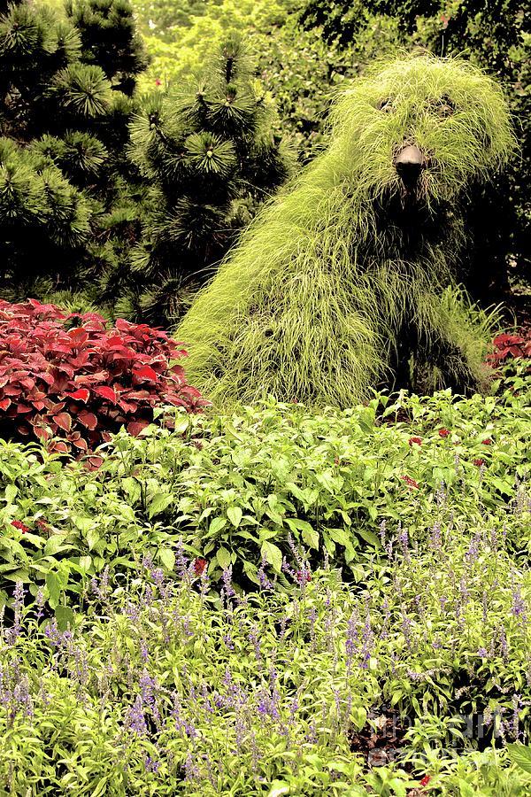 Atlanta Botanical Gardens Photograph - 01142017074 by Debbie L Foreman