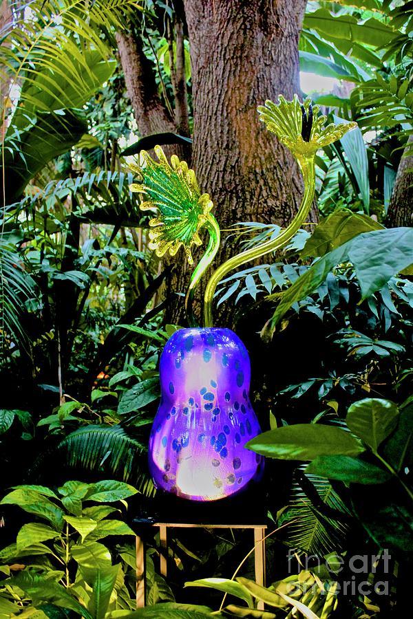 Atlanta Botanical Gardens Photograph - 01142017094 by Debbie L Foreman